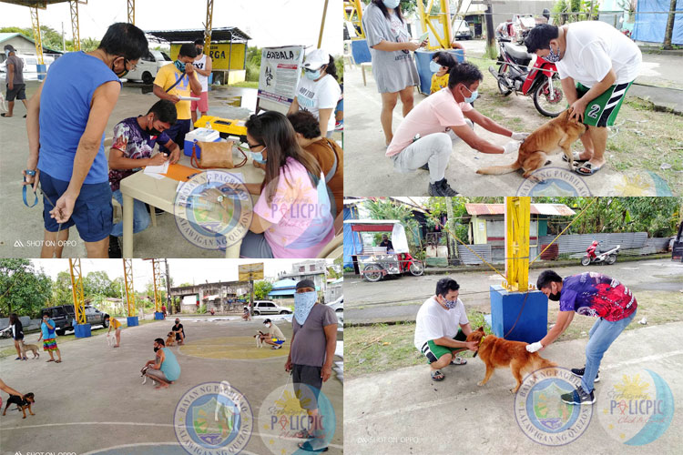 Mass Anti-Rabies Vaccination - Brgy. Bukal