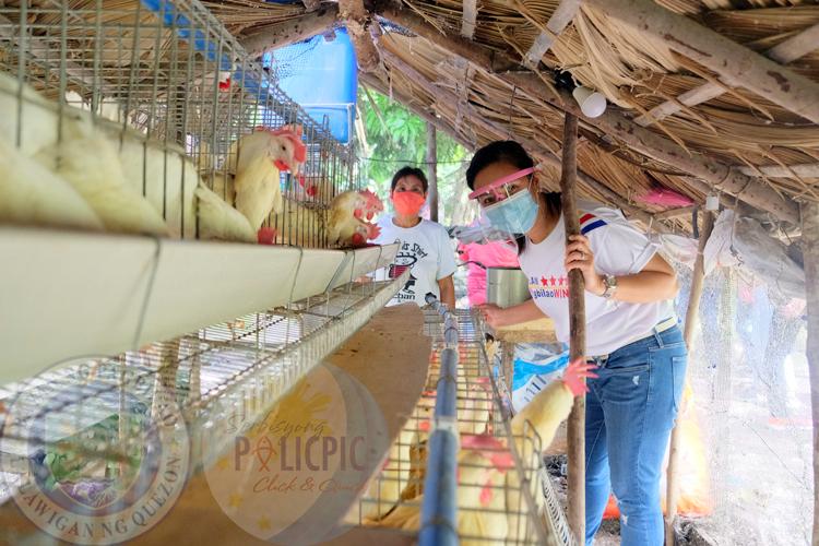 Egg Machine Program Visitation