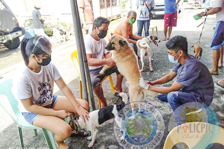 Mass Anti-Rabies Vaccination