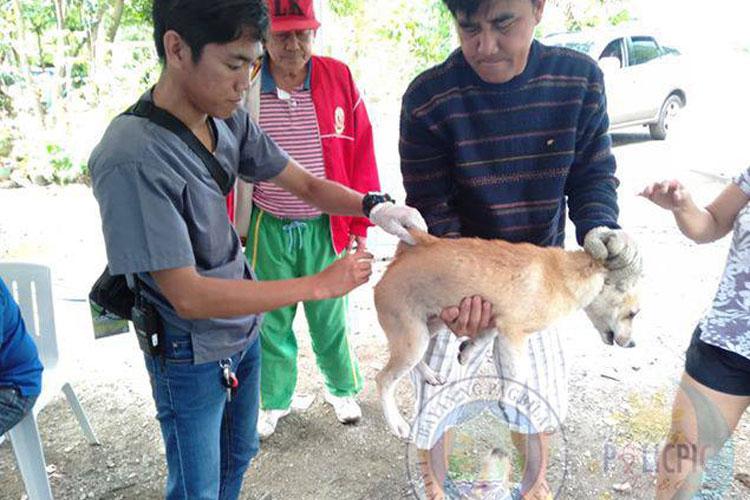Mass Vaccination in Brgy. Binahaan