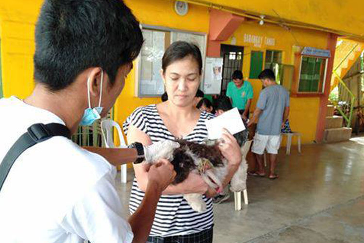 Mass Vaccination in Brgy. Silangang Malicboy