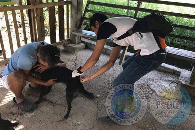 Mass Vaccination Brgy. Ilayang Palsabangon